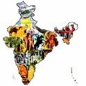 History Exam: India Kingdom icon