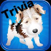 Dog Trivia