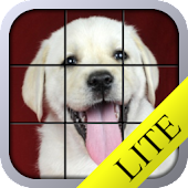 Puppy Tiles Lite - Dog Puzzle