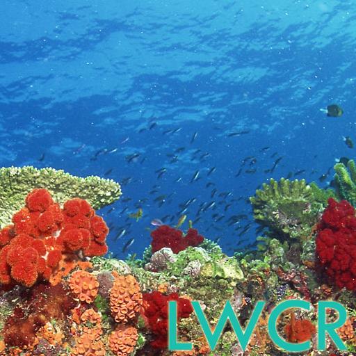 水中サンゴ礁LWP 個人化 App LOGO-APP試玩