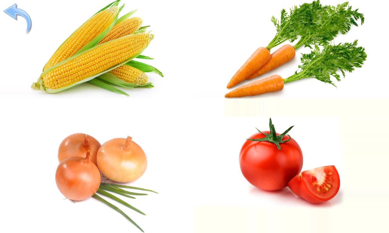 список правильных продуктов для похудения