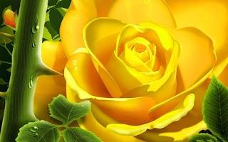 Screenshot of 3D Rose