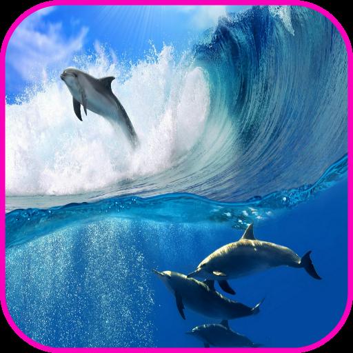 海豚壁紙 個人化 App LOGO-硬是要APP
