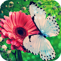 Flowers And Butterflies LWP icon