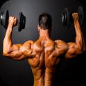Ganhar Massa Muscular icon