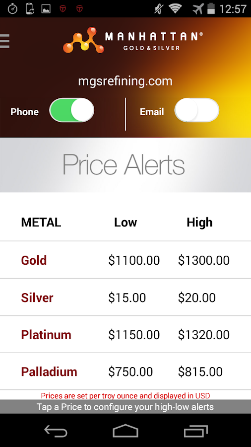 Precious Metal Prices - screenshot