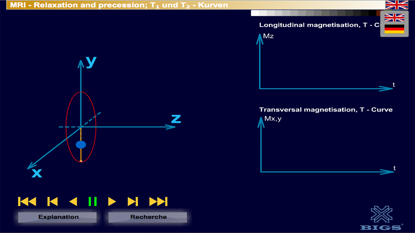 MRI Relaxation + precession- screenshot