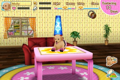 My Dog My Room 2