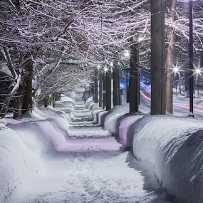 Snowy sidewalk 2 by Michael Wolfe - City,  Street & Park  Neighborhoods ( winter scene, winter, night scene, snow banks, snow, trees, street lights,  )