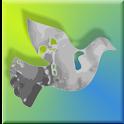 RobotiCode Daily Blend logo