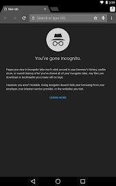 Chrome Browser - Google Screenshot 13