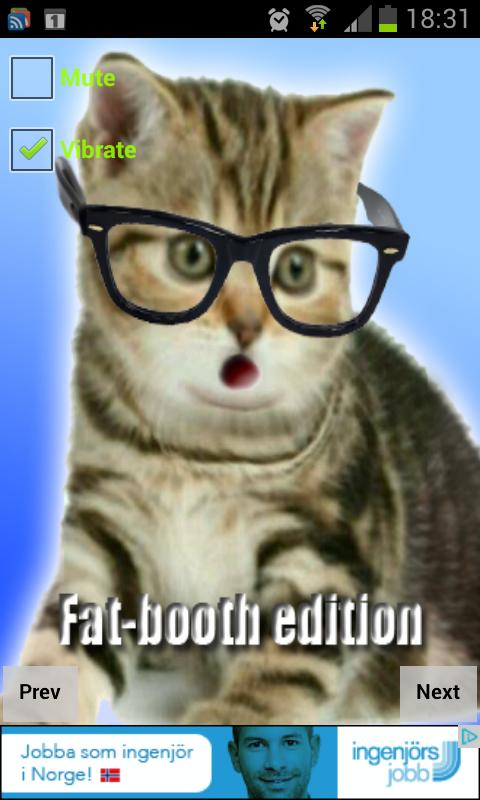 Crazy Hipster Cat - screenshot