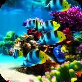 New Aquarium Live Wallpaper