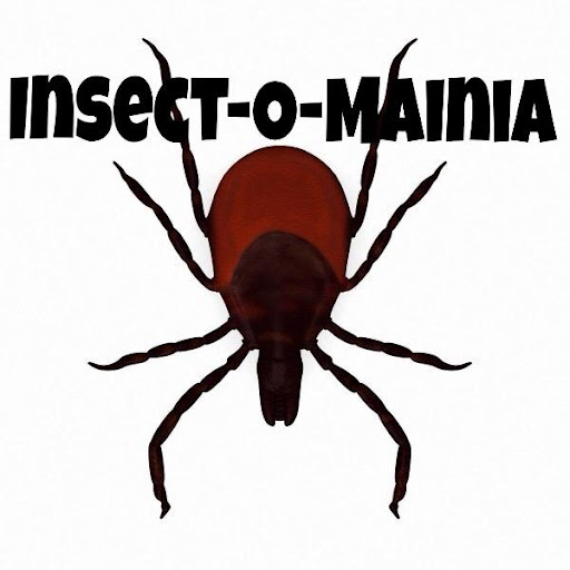 Insect-O-Mainia
