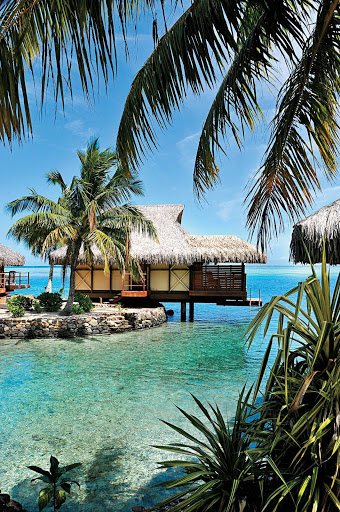 Remember those Hollywood classics set in the south seas? Live it out when the Paul Gauguin takes you to spectacular Moorea, near Tahiti.
