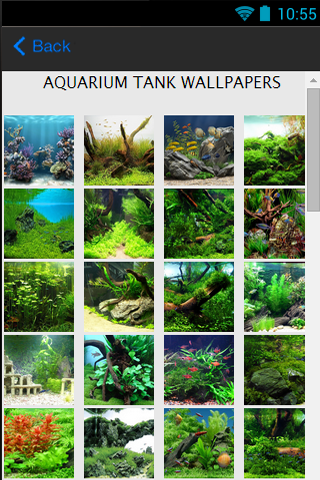 Aquarium Tank Wallpapers