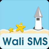 Wali SMS-Beach in memory theme