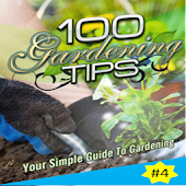 Your Simple Guide To Gardening