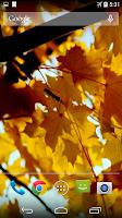Screenshot of Autumn Video Wallpaper