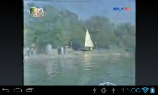 Free Egypt Live TV