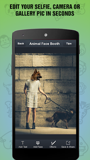 Animal Face Booth