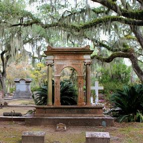 Ives Family by Sona Decker - City,  Street & Park  Cemeteries (  )