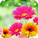 3D Flower icon