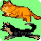 Cat and Dog Run on Screen icon