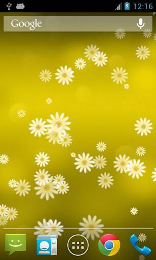 玩個人化App|雛菊花專業版動態桌布 Daisy Flower免費|APP試玩