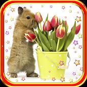 Bunny n Flowers live wallpaper