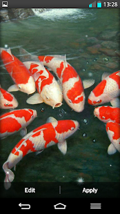 koi fish live wallpaper android apps on google play