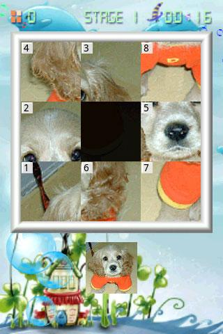 玩休閒App 可愛的小狗拼圖免費 APP試玩
