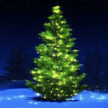 Download Christmas Music Songs 2016 APK on PC