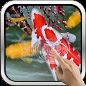 Interactive Koi Fish 3D icon