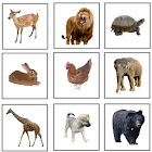 First Animals (in 5 languages) icon