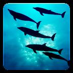 Deep Ocean 3D