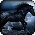 Black horse wallpapers icon