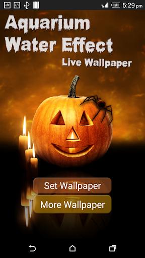Halloween Pumpkin in water