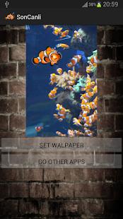 HD NEW Aquarium Live Wallpaper