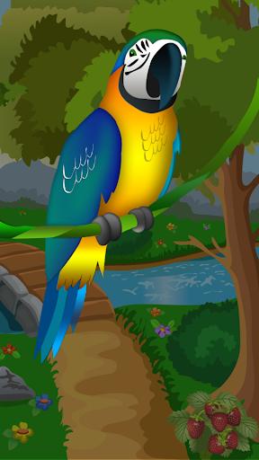 Talking Toota Parrot