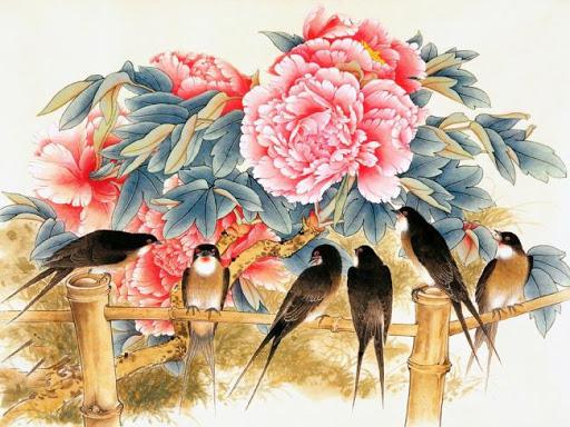 經典牡丹高清壁紙