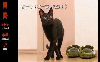 Screenshot of リナの黒い猫