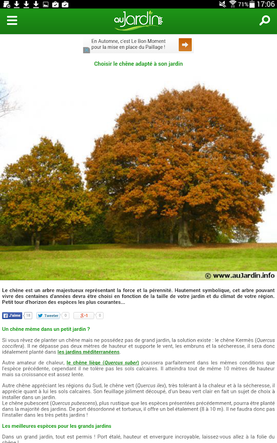 Au Jardin - screenshot