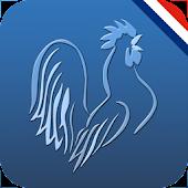Ligue 1 Live 2014-2015