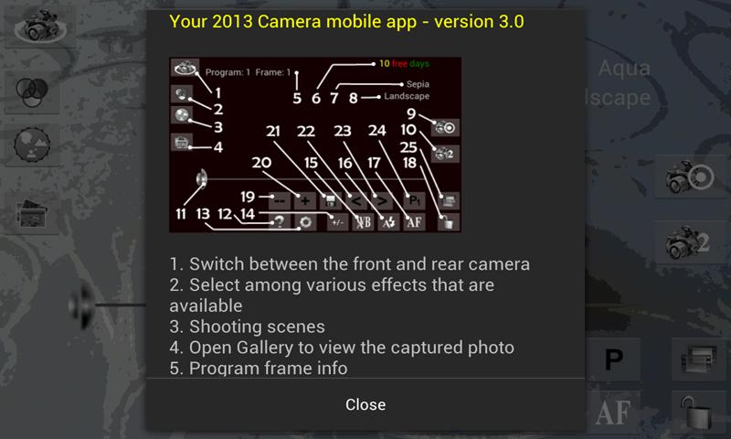 Your 2013 Camera - screenshot