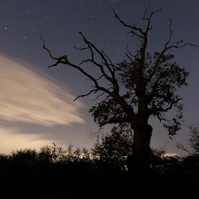 by Anthony Ashcroft - Landscapes Starscapes ( canon, anthony, stars, btec photography level 1, nightime, night, long exposure, 50d,  )