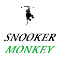 SNOOKER MONKEY