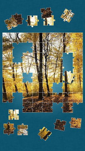森パズルゲーム