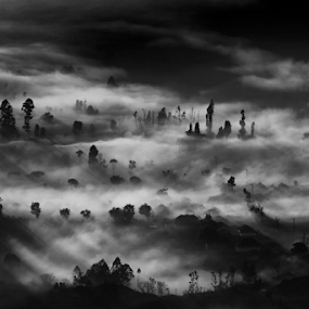 Come the sun by Henry Adam - Black & White Landscapes