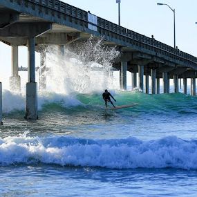 surfing  by Roman Gomez - Instagram & Mobile Instagram ( surfing, romansgallery, oceanbeach )